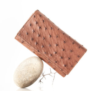 A075.OS - Ostrich Leather tripple ladies small purse