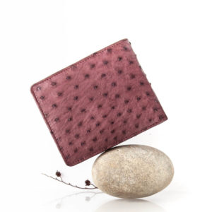 AO7NT.OS - Ostrich Leather Mens ID wallet